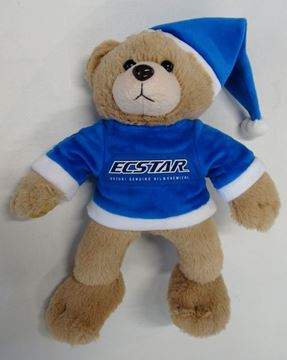 Picture of Suzuki Ecstar teddy bear teddybeer beer